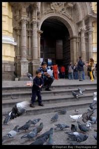 Boy feeding pigeons. Lima centro, Peru.