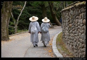 Buddhist monks follow the path through Gyeryongsan National Park in Chungcheongnam-do, South Korea.